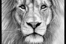 LION/LÖWE / LEEUWEN