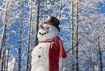 WINTER/HIVER / Winter
