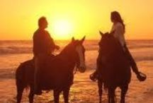 Horse riding on the beach / Itaca Hotel invites you to know what riding a horse feels like. From a funny experience for the smallest ones to a romantic walk for couples.