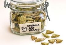 Treats and Eats: Feline Edition / Recipes, healthy treats and great make-at-home eats for your cats!