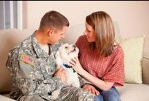 Military Pets / Resources and helpful tips for military personnel and the pets in their lives