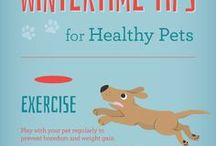 All-Weather Pets / Resources to help guide you and your pets through the hottest days of summer and the coldest chills of winter