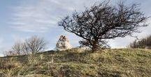Studio Kunst & Beeld / Een samenwerkingsverband tussen kunstenares Brecht Langhout en fotografe Karen Winnubst. De natuur is wat ons inspireert en bindt. Fragmenten uit onze jeugd worden verbeeld in het landschap. In het heden weerspiegelt zich het verleden.    |  Childhood Photography |  www.studiokunstenbeeld.nl