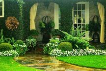 Curb Appeal & Outdoor Spaces