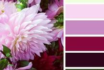 Color schemes & Palettes / Looking for inspiration and colors to combine that would complement or contrast one another?  Try these for inspiration for painting, decorating a room, quilting color combos. Find your favorite color scheme here.  Send me your favorite color scheme or creation to pin here too! / by michelle martinez