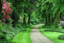 Garden ♥ Forest & Informal ★ / Zahrada * Lesní & Neformální