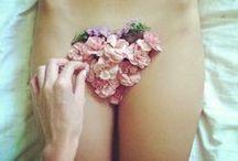 R O S E H I P S / floral focus