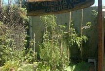 La Huerta de Andrea / cultivos orgánicos