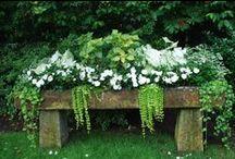 Garden ♥ Flowers Pots ★ / Zahrada * Květinové Nádoby