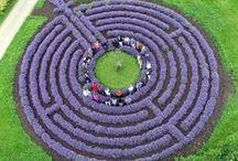 Garden ♥ Labyrints ★ / Zahrada * Labyrinty