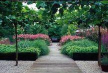 Garden ♥ Modern & Formal ★ / Zahrada * Moderní & Formální