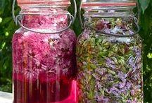 Cooking ♥ Harvest * Canning ★ / Vaření z úrody * Konzervování