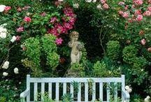 Garden ♥ Roses & Lavander ★ / Zahrada * Růže & Levandule