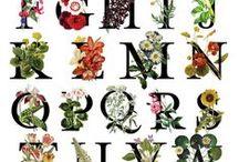Illustrations ♥ Flowers & Fonts / Ilustrace * Květiny & Písmo
