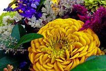 Flowers °Arrangement° °Victoria Regia°