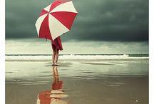 il papavero  |  umbrellas