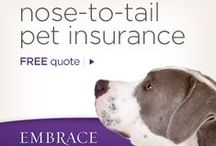 PET INSURANCE / Love Your Pet
