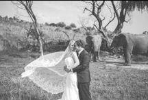 Erasmus wedding / Romantic African Wedding