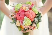 MT's Wedding