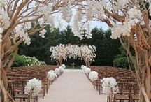 ~I'd Get Married Here~ / Dream wedding & honey moon destinations