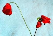 Flowers&