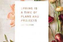 Apple Blossom inspiration / todo lo que nos inspira para nuestro nuevo pop up abril 2015.