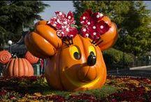 Disney's Halloween Festival - Clippers Quay Travel / Disneyland Paris - Disney's Halloween Festival