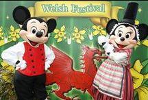 St. Davids Welsh Festival - Clippers Quay Travel / Disneyland Paris - St. Davids Welsh Festival