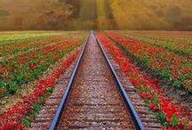 Railroads, Trains & Stations