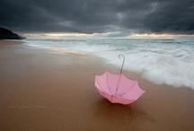 Umbrellas / by Nina Mucalov
