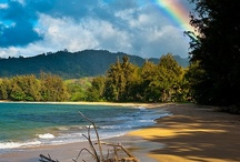 Hawaii / by D'Ann Gayler