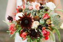 Wedding Bouquets / Wedding bouquets / by Weddings by Hannah