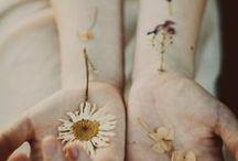 Litha / Midsummer