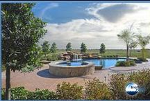 Swimming Pools / Go Outside and Play! We specialize in building custom swimming pools, renovations, outdoor kitchens, and pavilions. Call 281-988-7700.