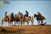 Pine Ridge Reservation  / Pictures of the Pine Ridge Reservation and initiatives.