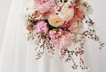 wedding / one day