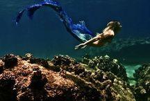 Mermaid / Mermaid DIY, mermaid inspiration, siren, ocean, beach  / by Scarlett Jackson