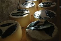 I nostri formaggi - Our Handmade Cheese / Those are the cheese we daily handmade following the receipts of the tradition.