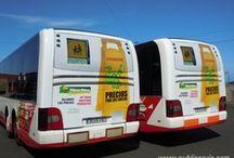 Historico de rotulaciones de autobuses Islas Canarias / Publicidad exterior. Rotulaciones en autobuses de Tenerife, La Palma, La gomera, el Hierro y Gran Canaria.
