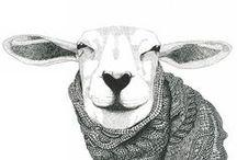 Sheep_Character