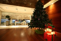 Christmas Special / Spending Christmas at Elite City Resort surrounded by our loved ones!