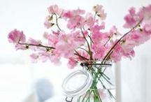 Beautiful Spring Bedrooms / Discover beautiful Spring bedrooms!