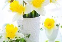 Easter / Veľká Noc