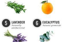 Natural-Home-Recipes-Healthy / Natural-Home-Recipes-Healthy