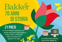 Bakker / cataloghi, curiosità ed informazioni su Bakker