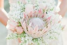 be inspired! / Nápady na originální dekorace, dobroty a výzdobu svatebního dne.