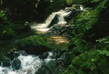 River & fishing