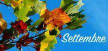 Aspettando l'autunno / Settembre segna il passaggio dall'estate all'autunno. È il momento della raccolta di frutti e ortaggi. È ancora necessario rimuovere le erbacce e tagliare i fiori estivi appassiti ed è il momento giusto per iniziare a potare le siepi. Puoi seminare gli ortaggi invernali. Questo mese si piantano gli arbusti sempreverdi, i rosai, le piante da frutto e i bulbi a fioritura primaverile.   Scopri tutti i consigli di giardinaggio per il mese di settembre sul sito di Bakker.com