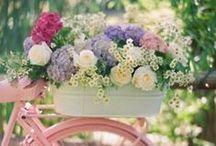 * Fleurs *