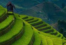 Wonderful places